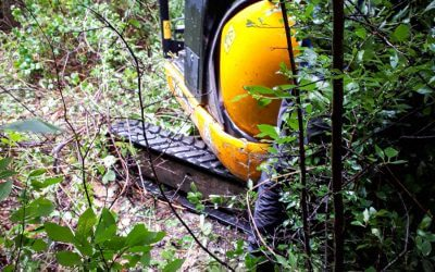 Excavator successfully recovered from woodland